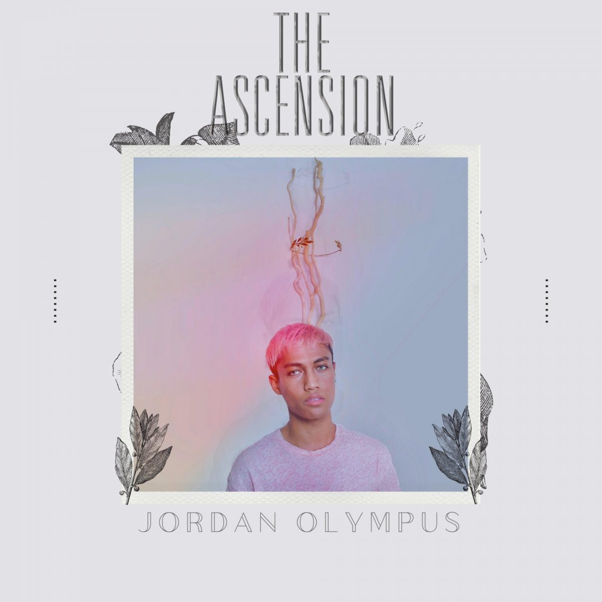 Jordan Olympus France net infos